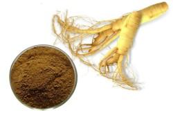 Экстракт женьшеня, входящий в состав тканевой маски